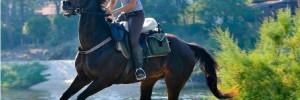 Катание на лошади и фотосессия для 1-2 чел.